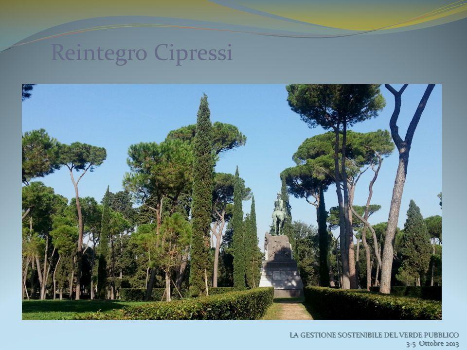 Reintegro Cipressi LA GESTIONE SOSTENIBILE DEL VERDE PUBBLICO 3-5 Ottobre 2013 3-5 Ottobre 2013