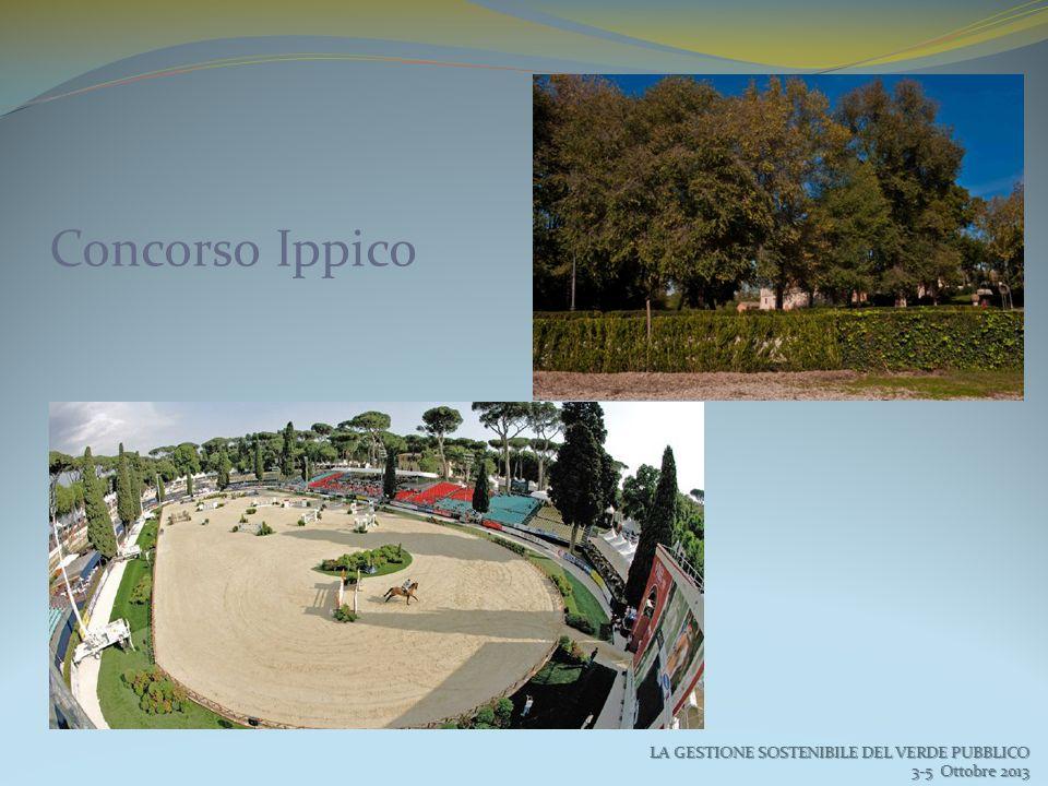 LA GESTIONE SOSTENIBILE DEL VERDE PUBBLICO 3-5 Ottobre 2013 3-5 Ottobre 2013 Concorso Ippico