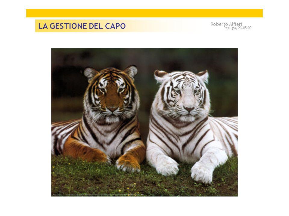 LA GESTIONE DEL CAPO Roberto Alfieri Perugia, 23.05.09