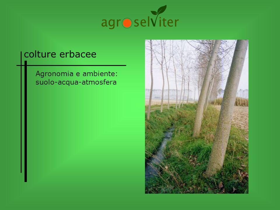 colture erbacee Agronomia e ambiente: suolo-acqua-atmosfera