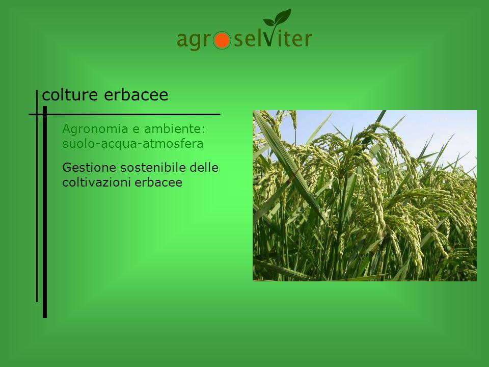 colture erbacee Gestione sostenibile delle coltivazioni erbacee Agronomia e ambiente: suolo-acqua-atmosfera