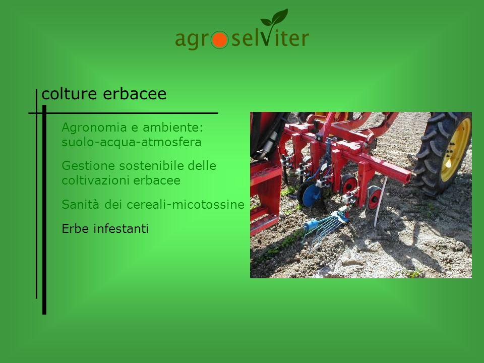colture erbacee Agronomia e ambiente: suolo-acqua-atmosfera Sanità dei cereali-micotossine Gestione sostenibile delle coltivazioni erbacee Erbe infest