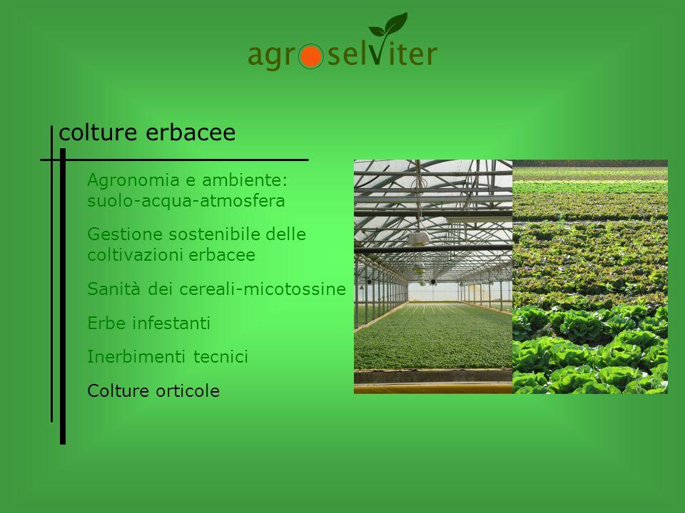 colture erbacee Agronomia e ambiente: suolo-acqua-atmosfera Colture orticole Inerbimenti tecnici Erbe infestanti Sanità dei cereali-micotossine Gestio
