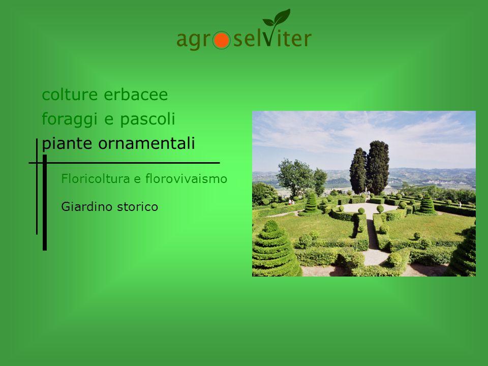 Giardino storico colture erbacee piante ornamentali foraggi e pascoli