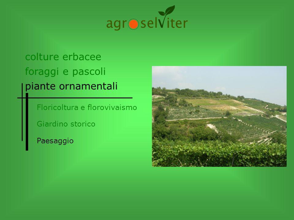 Floricoltura e florovivaismo Giardino storico Paesaggio colture erbacee piante ornamentali foraggi e pascoli