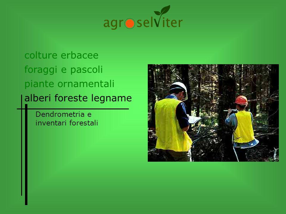 colture erbacee alberi foreste legname piante ornamentali foraggi e pascoli Dendrometria e inventari forestali