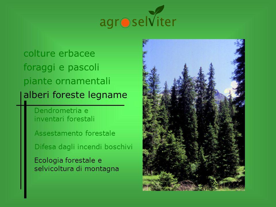 colture erbacee alberi foreste legname Dendrometria e inventari forestali Difesa dagli incendi boschivi Assestamento forestale Ecologia forestale e se