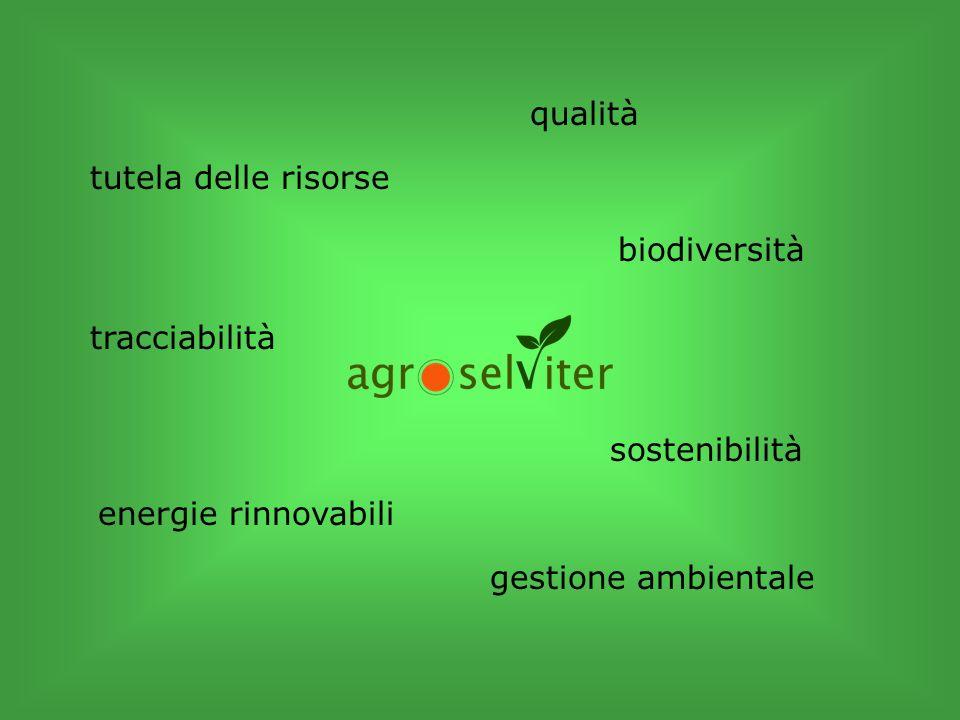 qualità sostenibilità gestione ambientale tracciabilità tutela delle risorse biodiversità energie rinnovabili