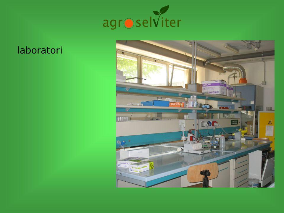 centro sperimentale