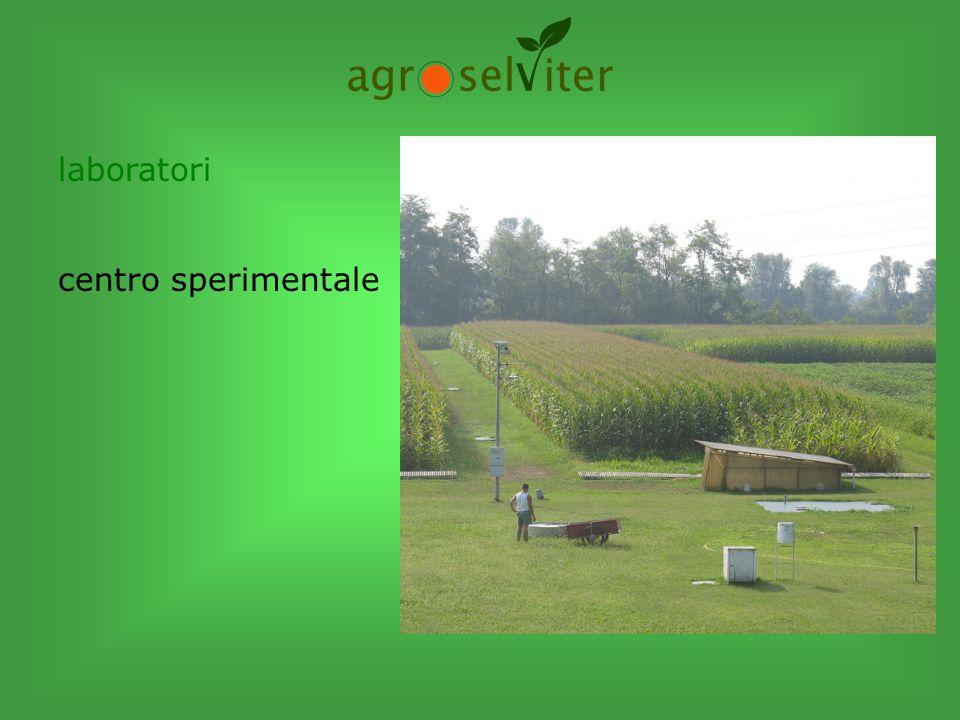 colture erbacee Agronomia e ambiente: suolo-acqua-atmosfera Erbe infestanti Sanità dei cereali-micotossine Gestione sostenibile delle coltivazioni erbacee Inerbimenti tecnici