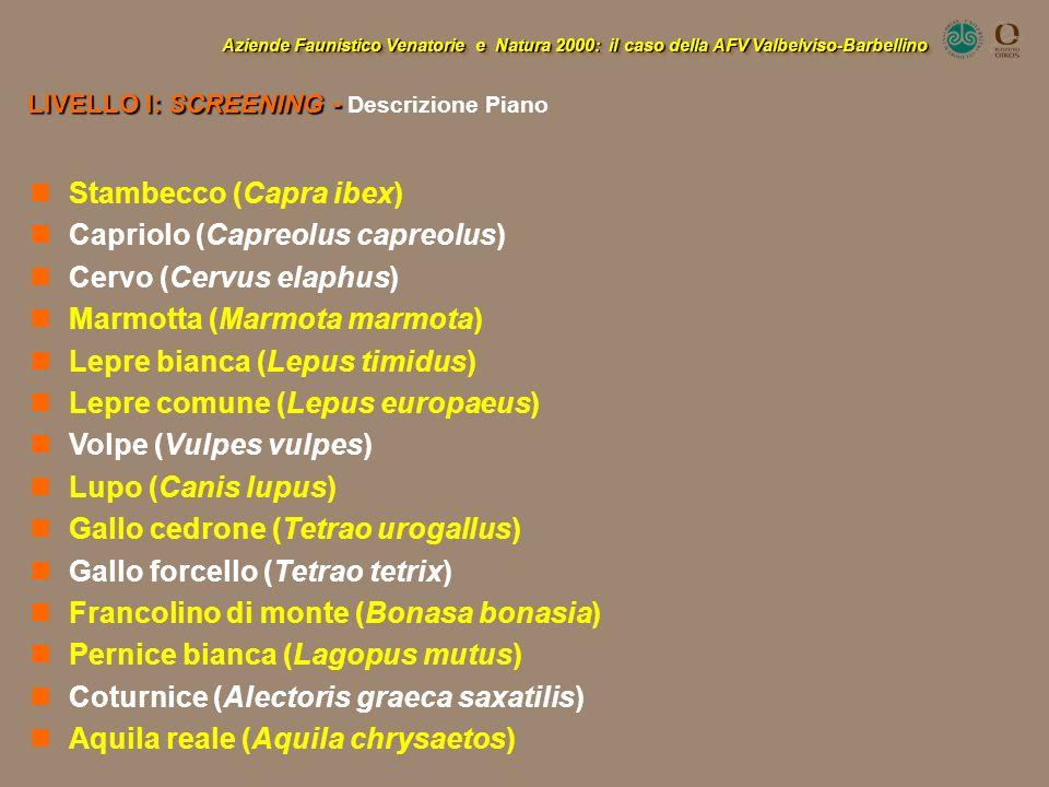 Aziende Faunistico Venatorie e Natura 2000: il caso della AFV Valbelviso-Barbellino LIVELLO I: SCREENING - LIVELLO I: SCREENING - Descrizione Piano St