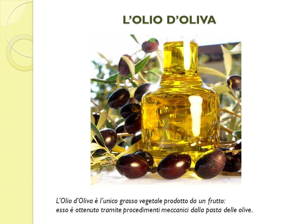 LOLIO DOLIVA LOlio dOliva è lunico grasso vegetale prodotto da un frutto: esso è ottenuto tramite procedimenti meccanici dalla pasta delle olive.