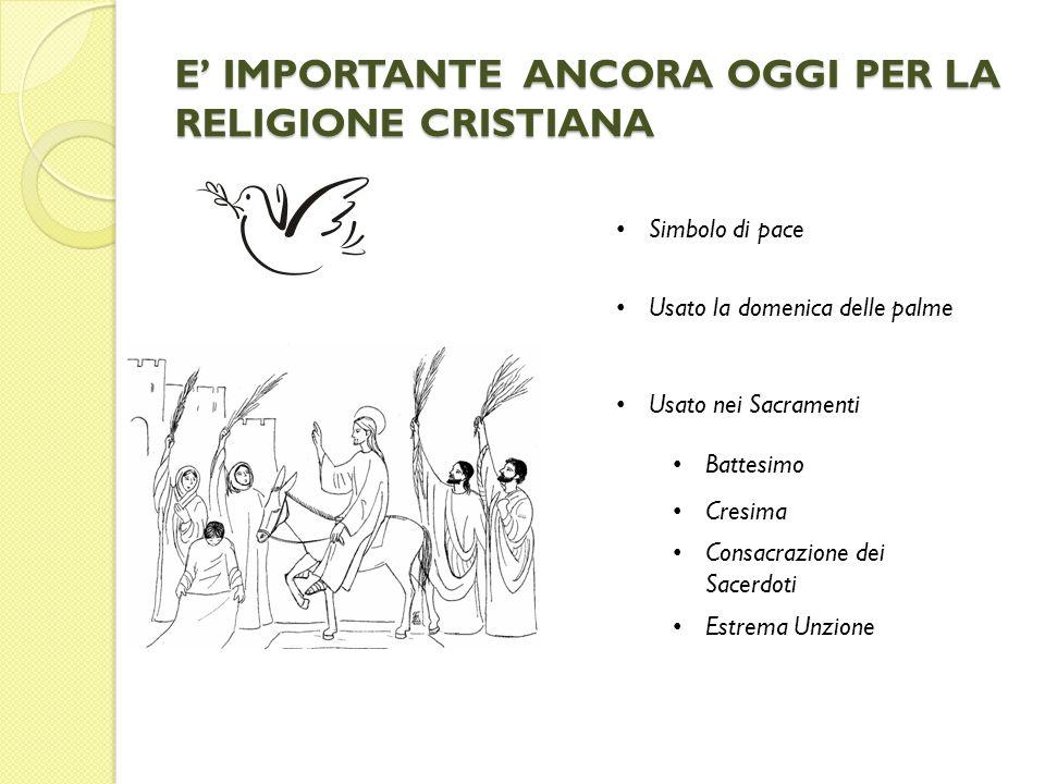E IMPORTANTE ANCORA OGGI PER LA RELIGIONE CRISTIANA Simbolo di pace Usato la domenica delle palme Usato nei Sacramenti Battesimo Cresima Consacrazione