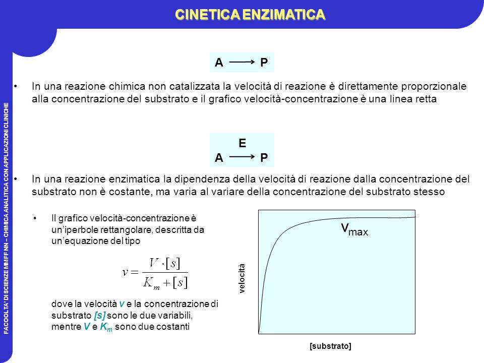 FACOOLTA DI SCIENZE MM FF NN – CHIMICA ANALITICA CON APPLICAZIONI CLINICHE In una reazione chimica non catalizzata la velocità di reazione è direttamente proporzionale alla concentrazione del substrato e il grafico velocità-concentrazione è una linea retta A P E A P In una reazione enzimatica la dipendenza della velocità di reazione dalla concentrazione del substrato non è costante, ma varia al variare della concentrazione del substrato stesso Il grafico velocità-concentrazione è uniperbole rettangolare, descritta da unequazione del tipo dove la velocità v e la concentrazione di substrato [s] sono le due variabili, mentre V e K m sono due costanti [substrato] velocità CINETICA ENZIMATICA v max