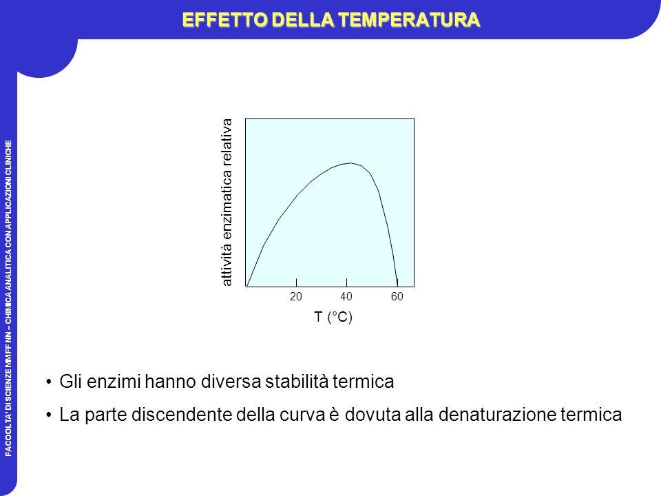 FACOOLTA DI SCIENZE MM FF NN – CHIMICA ANALITICA CON APPLICAZIONI CLINICHE EFFETTO DELLA TEMPERATURA Gli enzimi hanno diversa stabilità termica La parte discendente della curva è dovuta alla denaturazione termica T (°C) attività enzimatica relativa 204060