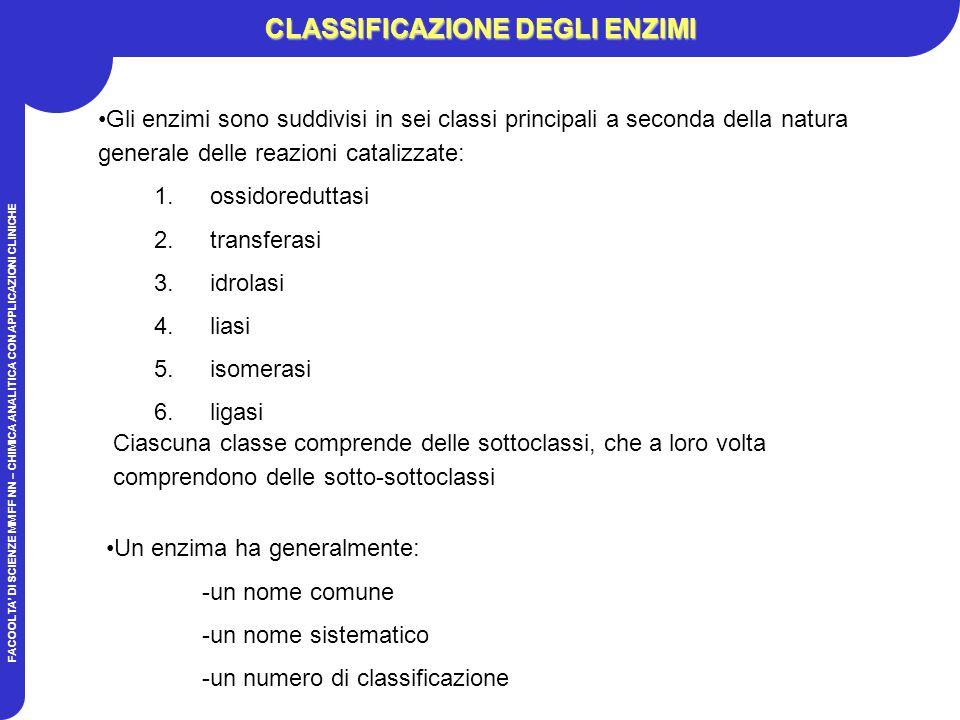FACOOLTA DI SCIENZE MM FF NN – CHIMICA ANALITICA CON APPLICAZIONI CLINICHE CLASSIFICAZIONE DEGLI ENZIMI 1.ossidoreduttasi 2.transferasi 3.idrolasi 4.liasi 5.isomerasi 6.ligasi Gli enzimi sono suddivisi in sei classi principali a seconda della natura generale delle reazioni catalizzate: Ciascuna classe comprende delle sottoclassi, che a loro volta comprendono delle sotto-sottoclassi Un enzima ha generalmente: -un nome comune -un nome sistematico -un numero di classificazione