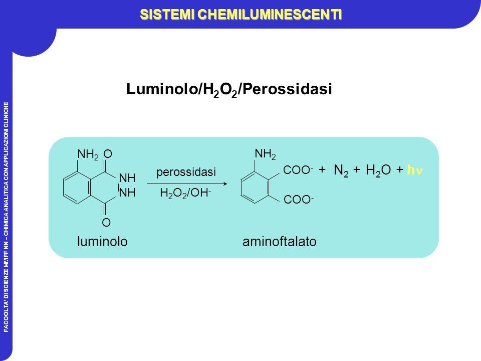 FACOOLTA DI SCIENZE MM FF NN – CHIMICA ANALITICA CON APPLICAZIONI CLINICHE SISTEMI CHEMILUMINESCENTI luminolo NH NH 2 O O aminoftalato + N 2 + H 2 O + h perossidasi H 2 O 2 /OH - COO - NH 2 COO - Luminolo/H 2 O 2 /Perossidasi