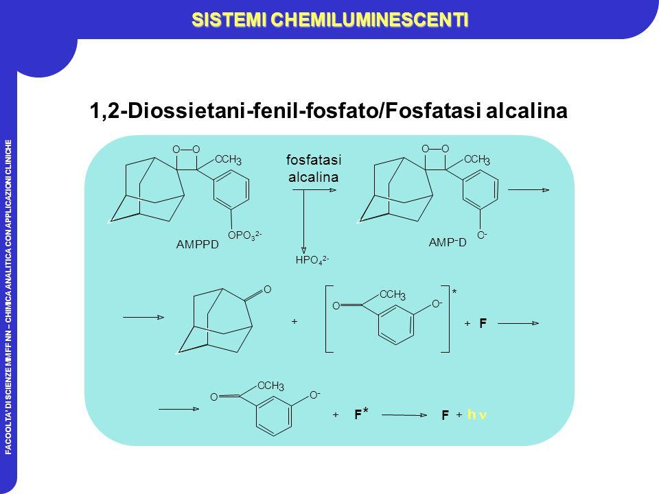 FACOOLTA DI SCIENZE MM FF NN – CHIMICA ANALITICA CON APPLICAZIONI CLINICHE SISTEMI CHEMILUMINESCENTI 1,2-Diossietani-fenil-fosfato/Fosfatasi alcalina HPO 4 2- O + O - O OCH 3 * + F F + h OO OCH 3 OPO 3 2- AMPPD O - O OCH 3 * + F fosfatasi alcalina OCH 3 O - AMP - D OO