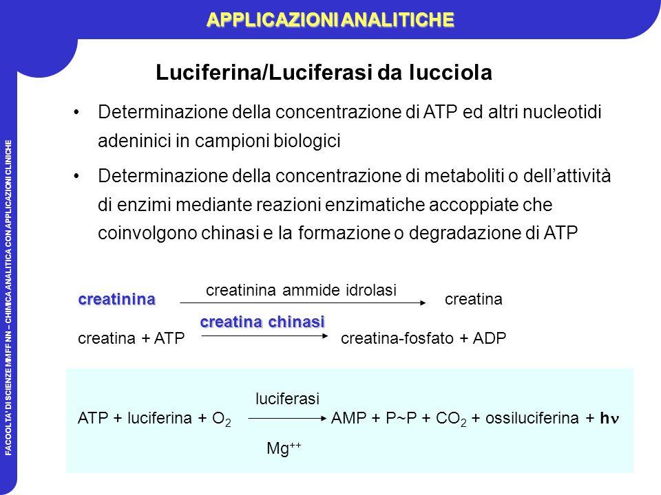 FACOOLTA DI SCIENZE MM FF NN – CHIMICA ANALITICA CON APPLICAZIONI CLINICHE APPLICAZIONI ANALITICHE Luciferina/Luciferasi da lucciola Determinazione della concentrazione di ATP ed altri nucleotidi adeninici in campioni biologici Determinazione della concentrazione di metaboliti o dellattività di enzimi mediante reazioni enzimatiche accoppiate che coinvolgono chinasi e la formazione o degradazione di ATP creatinina creatinina creatina creatina + ATP creatina-fosfato + ADP ATP + luciferina + O 2 AMP + P~P + CO 2 + ossiluciferina + h creatinina ammide idrolasi creatina chinasi luciferasi Mg ++