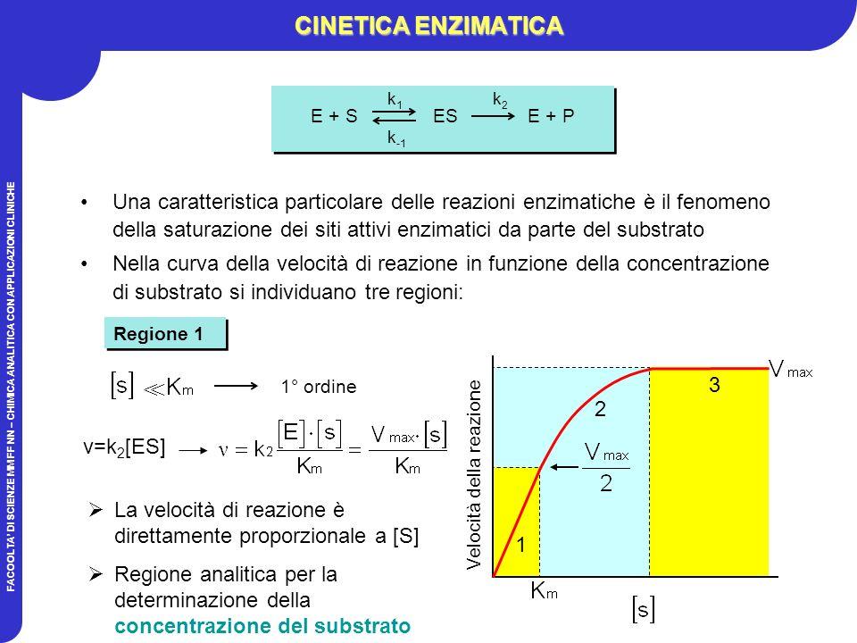 FACOOLTA DI SCIENZE MM FF NN – CHIMICA ANALITICA CON APPLICAZIONI CLINICHE Una caratteristica particolare delle reazioni enzimatiche è il fenomeno della saturazione dei siti attivi enzimatici da parte del substrato Nella curva della velocità di reazione in funzione della concentrazione di substrato si individuano tre regioni: Regione 1 CINETICA ENZIMATICA La velocità di reazione è direttamente proporzionale a [S] Regione analitica per la determinazione della concentrazione del substrato 1° ordine >> 1 2 3 Velocità della reazione k 1 k 2 E + S ES E + P k -1 k 1 k 2 E + S ES E + P k -1 v=k 2 [ES]