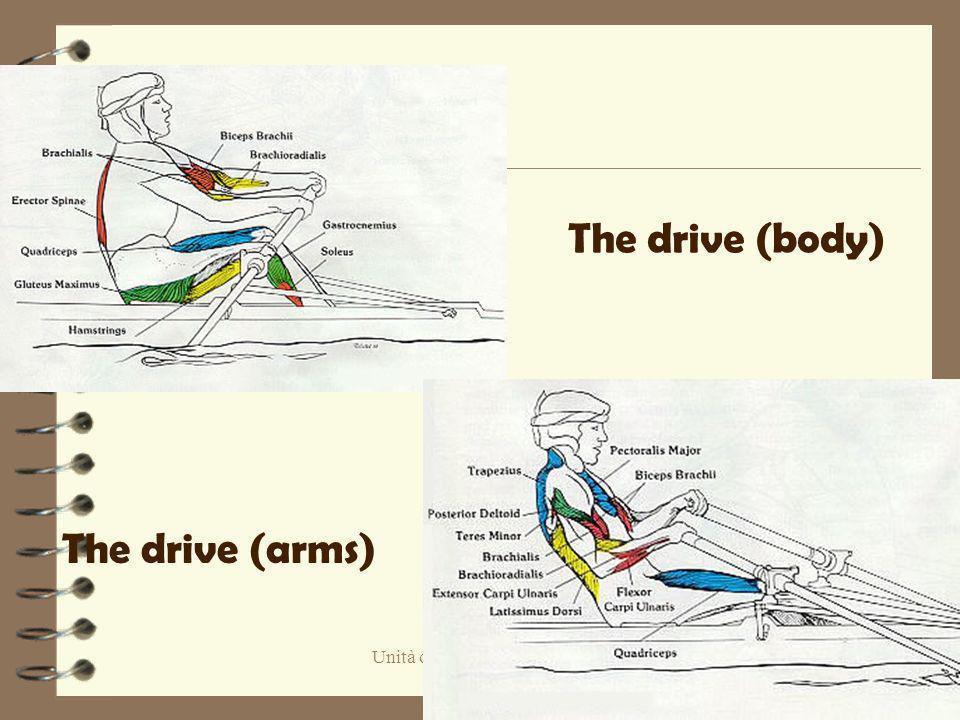 Unità operativa di Pediatria Piacenza The drive (arms) The drive (body)