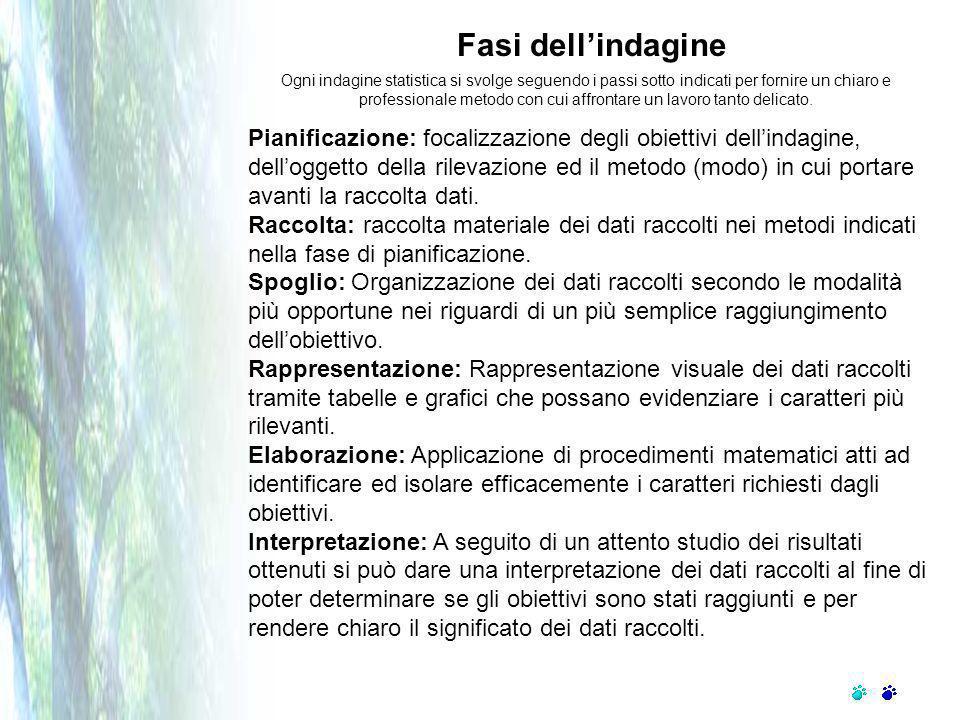 Pianificazione: focalizzazione degli obiettivi dellindagine, delloggetto della rilevazione ed il metodo (modo) in cui portare avanti la raccolta dati.