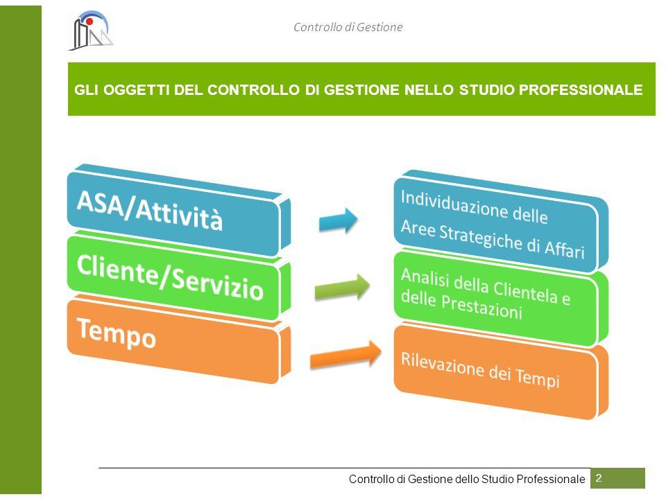 Controllo di Gestione Controllo di Gestione dello Studio Professionale 2 GLI OGGETTI DEL CONTROLLO DI GESTIONE NELLO STUDIO PROFESSIONALE