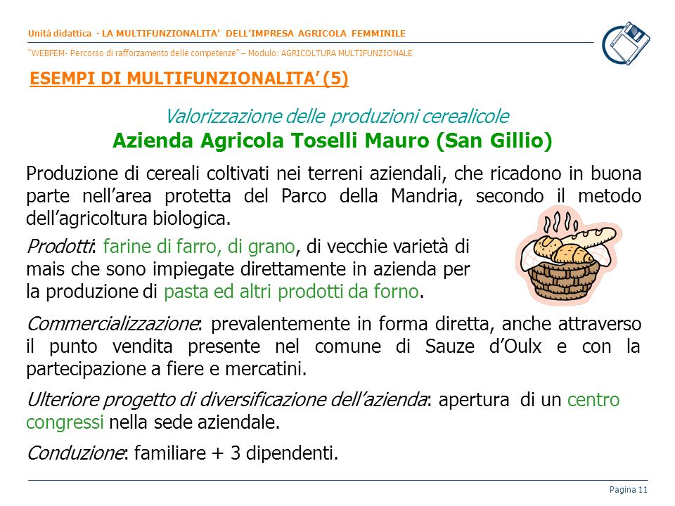 Pagina 11 Valorizzazione delle produzioni cerealicole Azienda Agricola Toselli Mauro (San Gillio) Produzione di cereali coltivati nei terreni aziendal