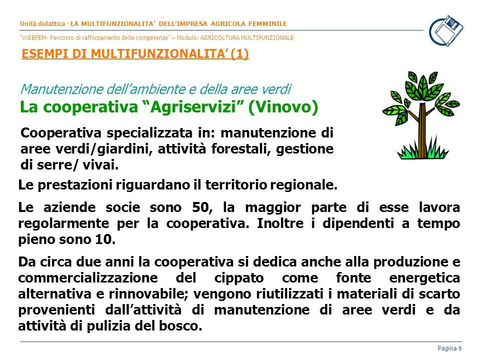 Pagina 6 Manutenzione dellambiente e della aree verdi La cooperativa Agriservizi (Vinovo) Cooperativa specializzata in: manutenzione di aree verdi/gia