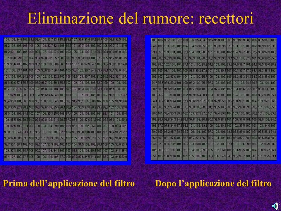 Eliminazione del rumore: recettori Prima dellapplicazione del filtroDopo lapplicazione del filtro