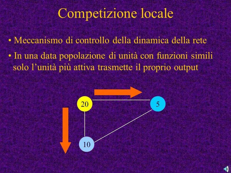 Competizione locale Meccanismo di controllo della dinamica della rete In una data popolazione di unità con funzioni simili solo lunità più attiva trasmette il proprio output 1020 15 20 10 5