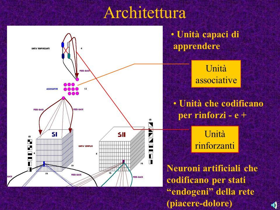 Architettura Unità capaci di apprendere Unità che codificano per rinforzi - e + Unità associative Unità rinforzanti Neuroni artificiali che codificano per stati endogeni della rete (piacere-dolore)