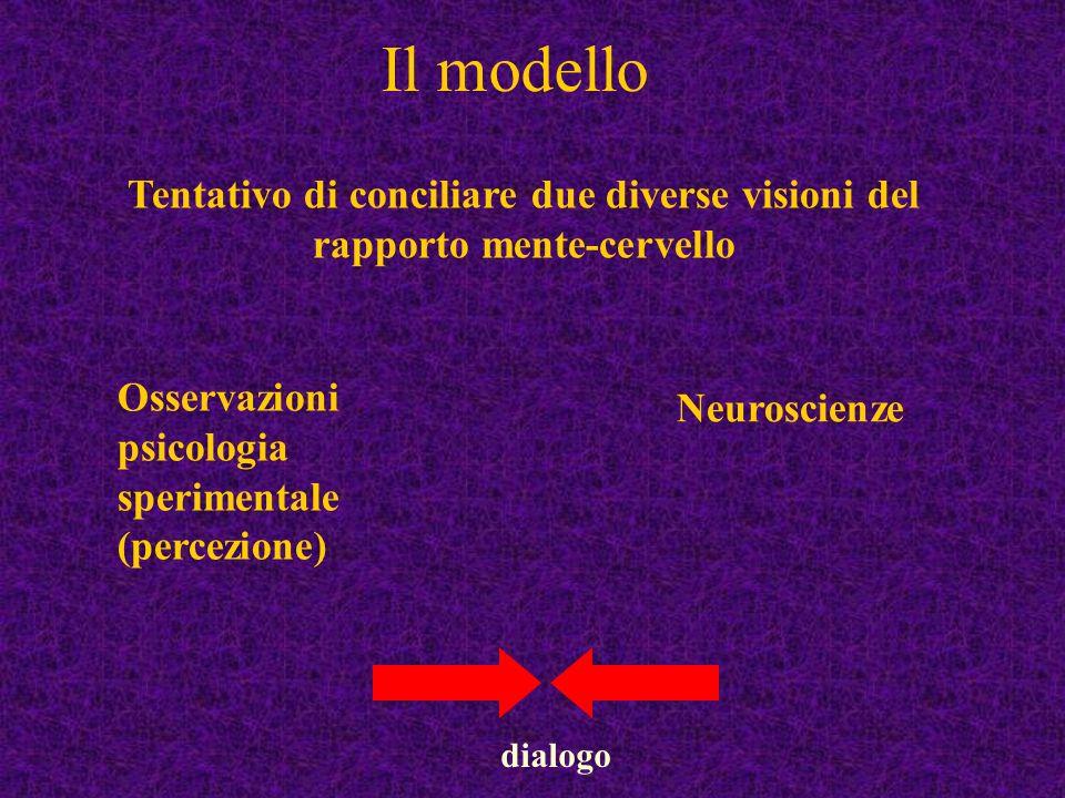 Il modello Tentativo di conciliare due diverse visioni del rapporto mente-cervello Neuroscienze Osservazioni psicologia sperimentale (percezione) dial