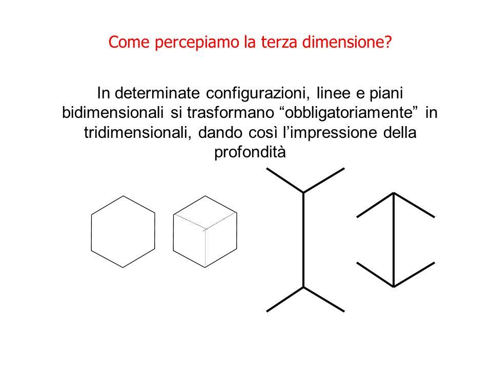 Come percepiamo la terza dimensione? In determinate configurazioni, linee e piani bidimensionali si trasformano obbligatoriamente in tridimensionali,