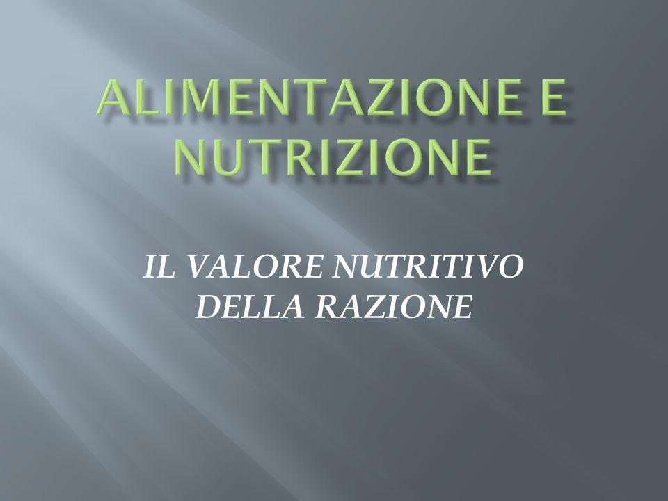IL VALORE NUTRITIVO DELLA RAZIONE