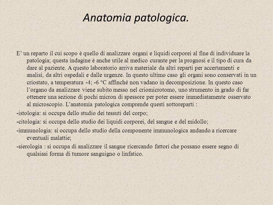 Anatomia patologica. E un reparto il cui scopo è quello di analizzare organi e liquidi corporei al fine di individuare la patologia; questa indagine è