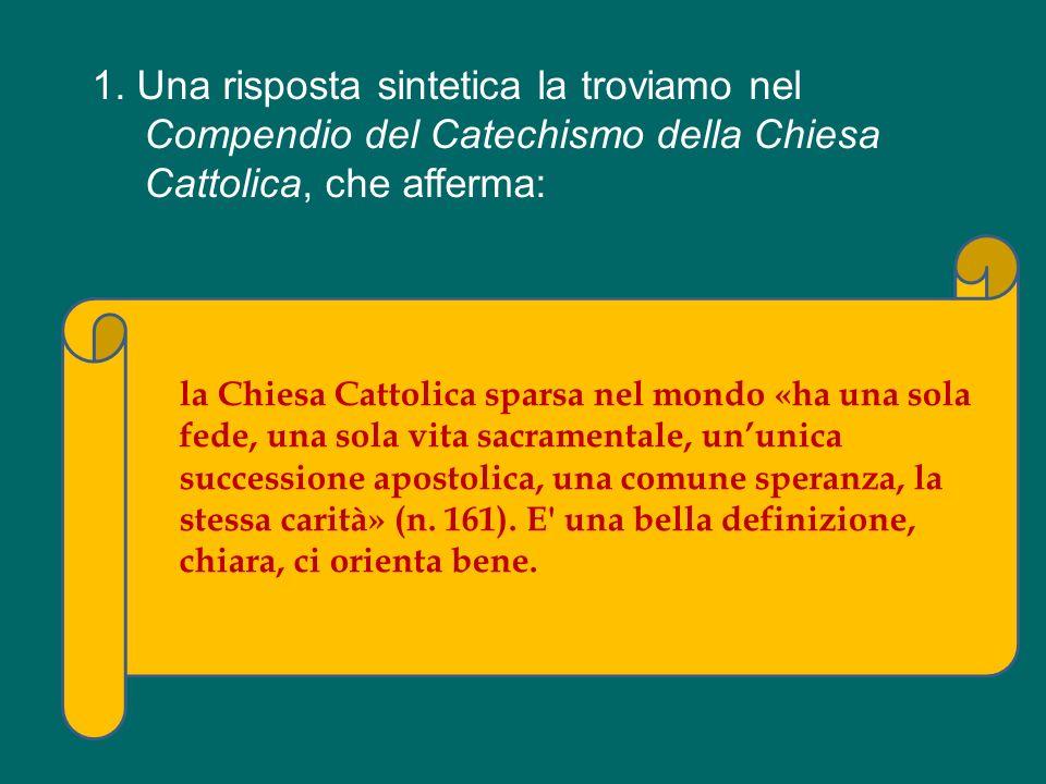 C è il Vescovo dello Sri Lanka, il Vescovo del Sud Africa, un Vescovo dell India, ce ne sono tanti qui… Vescovi dell America Latina.