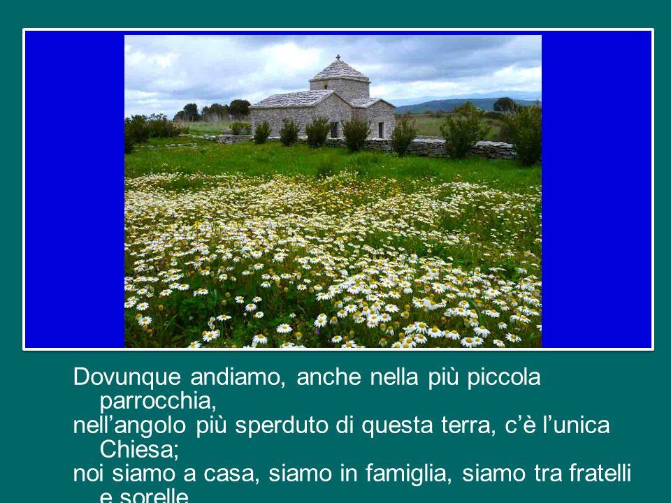 Unità nella fede, nella speranza, nella carità, unità nei Sacramenti, nel Ministero: sono come pilastri che sorreggono e tengono insieme lunico grande edificio della Chiesa.