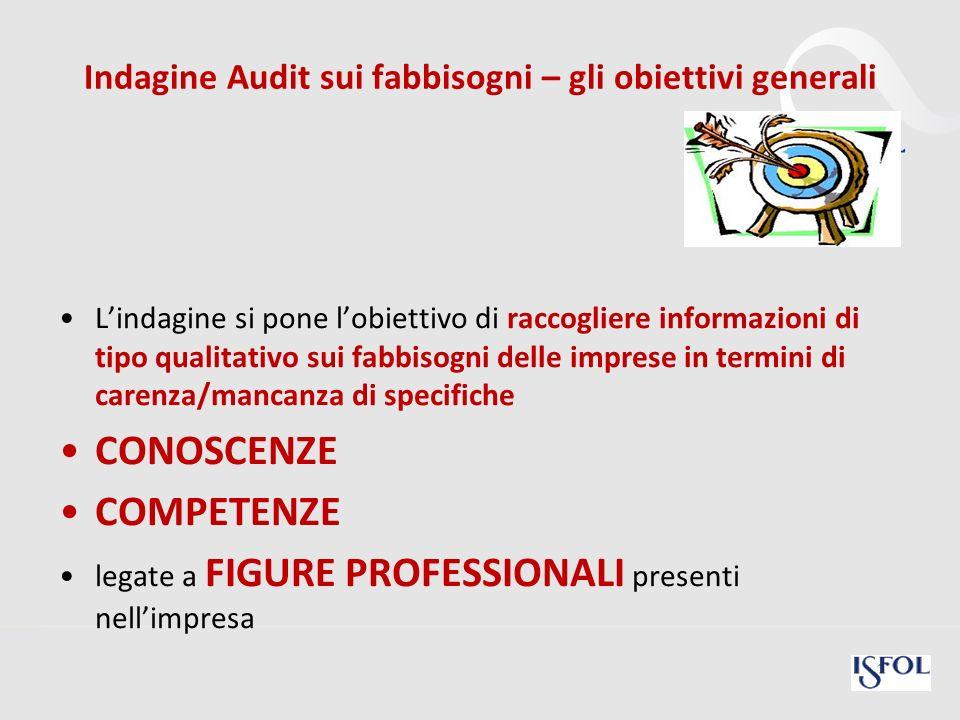 22 Indagine Audit sui fabbisogni – gli obiettivi generali Lindagine si pone lobiettivo di raccogliere informazioni di tipo qualitativo sui fabbisogni