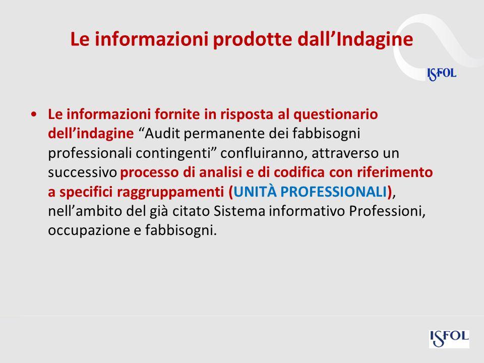 26 Le informazioni prodotte dallIndagine Le informazioni fornite in risposta al questionario dellindagine Audit permanente dei fabbisogni professional