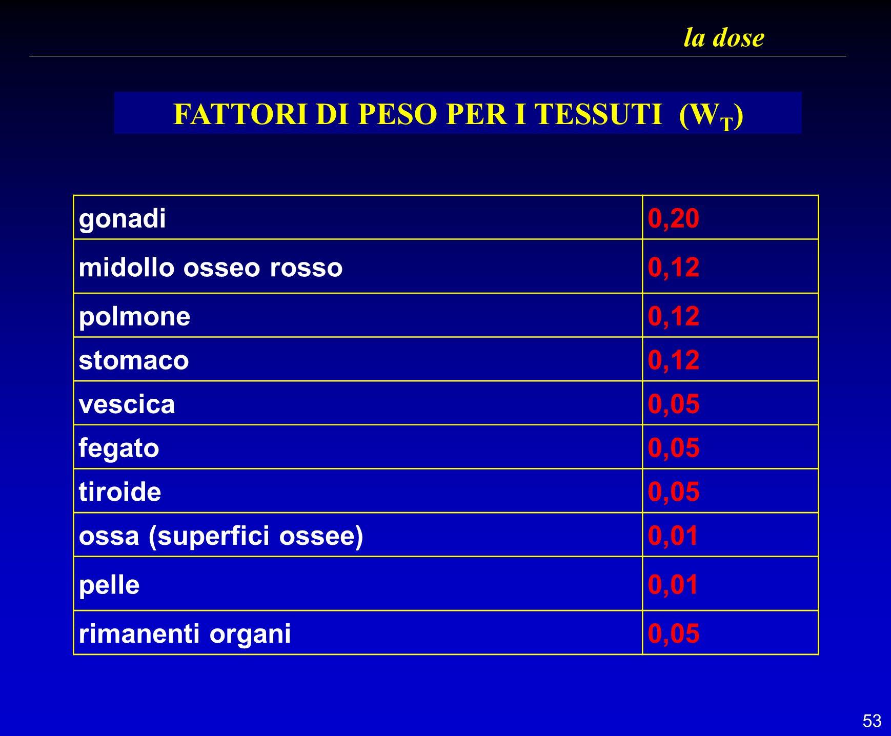 53 la dose FATTORI DI PESO PER I TESSUTI (W T ) gonadi0,20 midollo osseo rosso0,12 polmone0,12 stomaco0,12 vescica0,05 fegato0,05 tiroide0,05 ossa (su