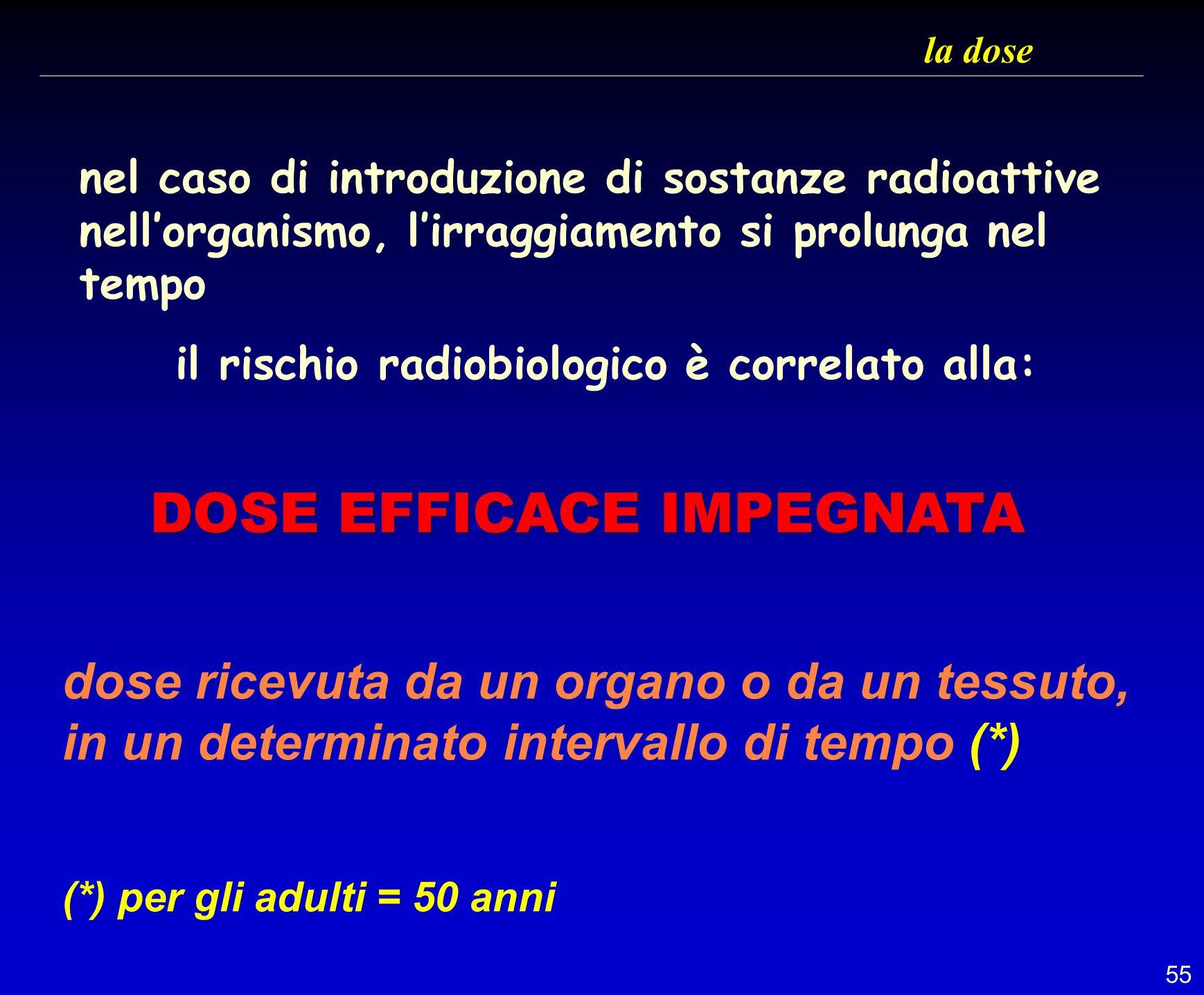 55 la dose nel caso di introduzione di sostanze radioattive nellorganismo, lirraggiamento si prolunga nel tempo il rischio radiobiologico è correlato