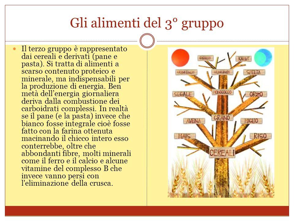 Gli alimenti del 3° gruppo Il terzo gruppo è rappresentato dai cereali e derivati (pane e pasta).