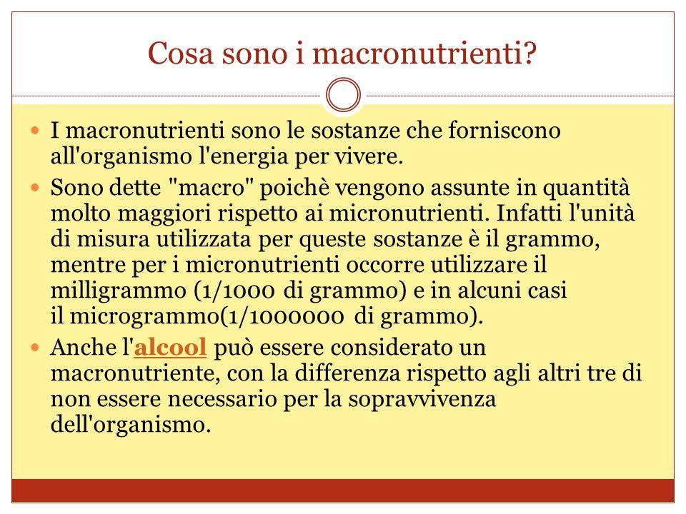 Cosa sono i macronutrienti.
