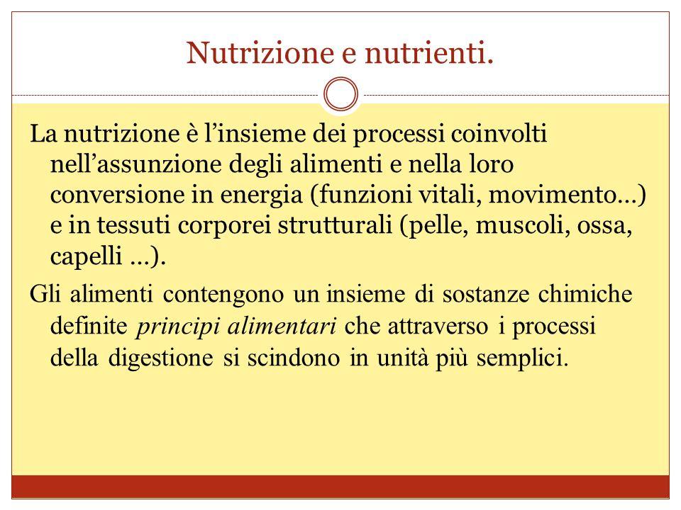Nutrizione e nutrienti.