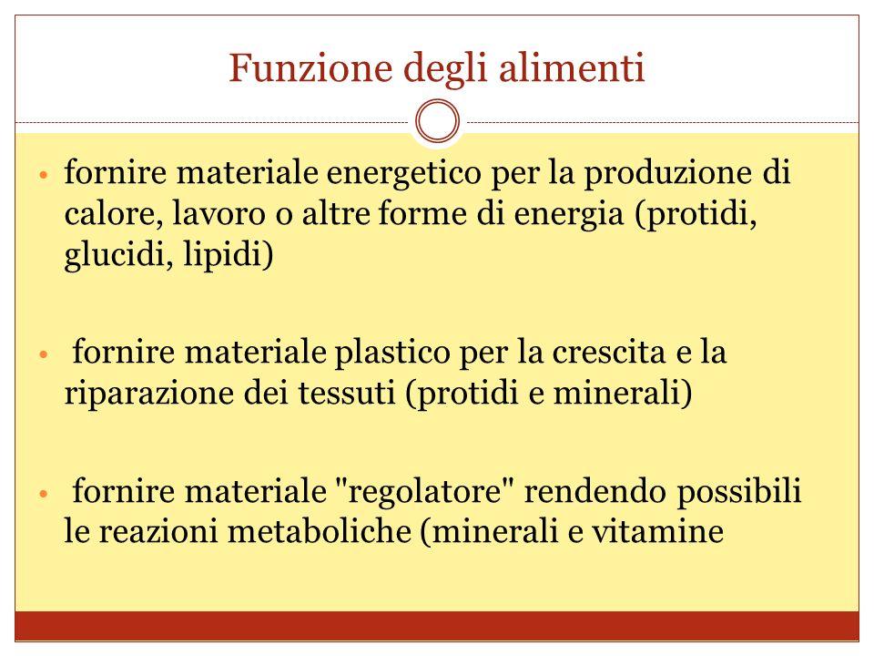 Funzione degli alimenti fornire materiale energetico per la produzione di calore, lavoro o altre forme di energia (protidi, glucidi, lipidi) fornire materiale plastico per la crescita e la riparazione dei tessuti (protidi e minerali) fornire materiale regolatore rendendo possibili le reazioni metaboliche (minerali e vitamine