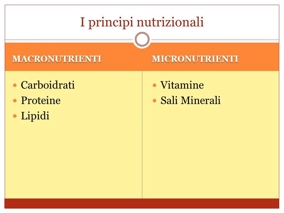 FIBRE SOLUBILI FIBRE INSOLUBILI Abbassano la colesterolemia, poichè contribuiscono alla eliminazione del colesterolo Abbassano la glicemia, poichè rallentano l assorbimento dei carboidrati Riducono il tempo di transito intestinale delle feci; Hanno un azione disintossicante e anticancerogena (in seguito alla riduzione del tempo di transito delle feci diminuisce il contatto delle feci con le mucose);