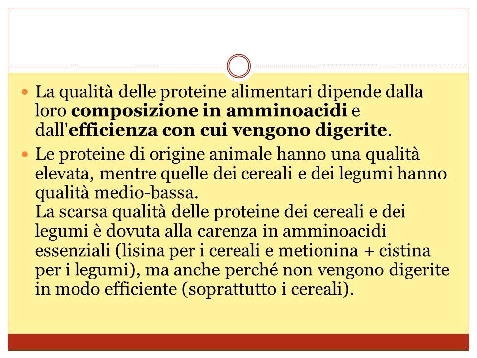 La qualità delle proteine alimentari dipende dalla loro composizione in amminoacidi e dall efficienza con cui vengono digerite.