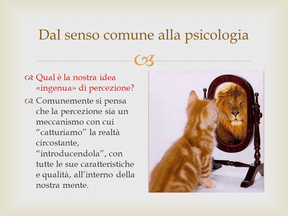 Dal senso comune alla psicologia Qual è la nostra idea «ingenua» di percezione? Comunemente si pensa che la percezione sia un meccanismo con cui cattu