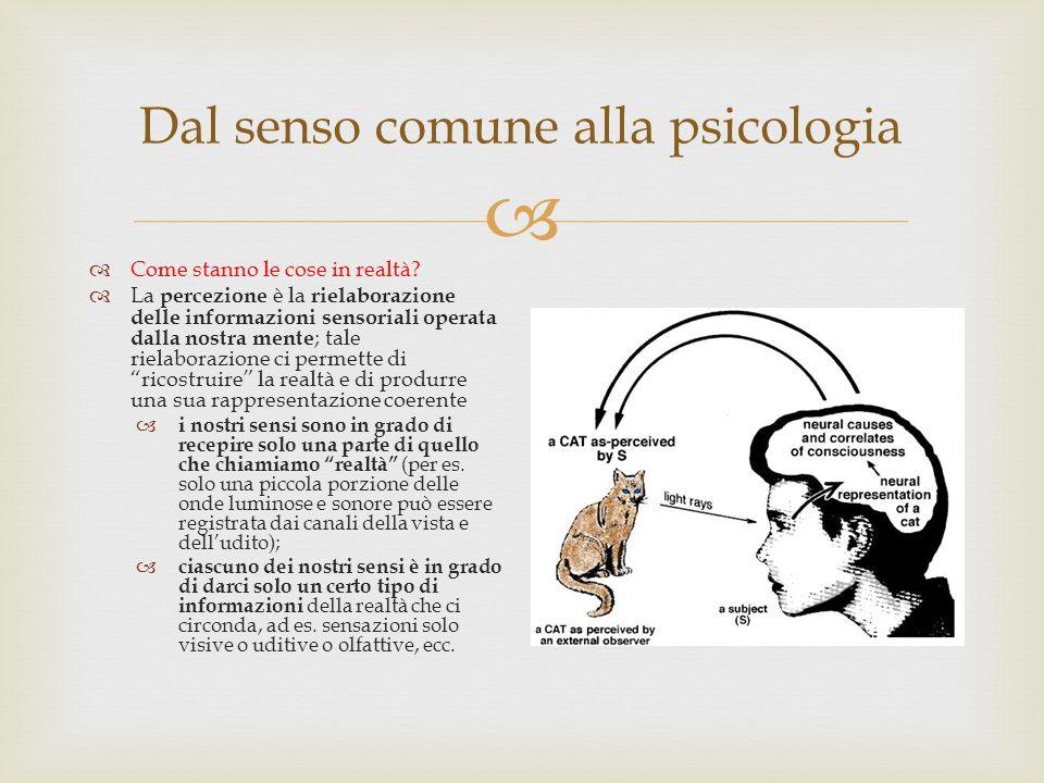 Dal senso comune alla psicologia Come stanno le cose in realtà? La percezione è la rielaborazione delle informazioni sensoriali operata dalla nostra m